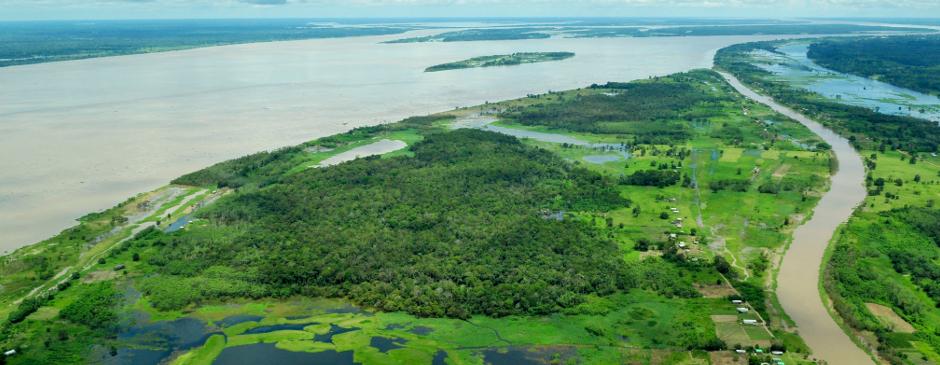 GLOBAL BRAZIL: NATURE