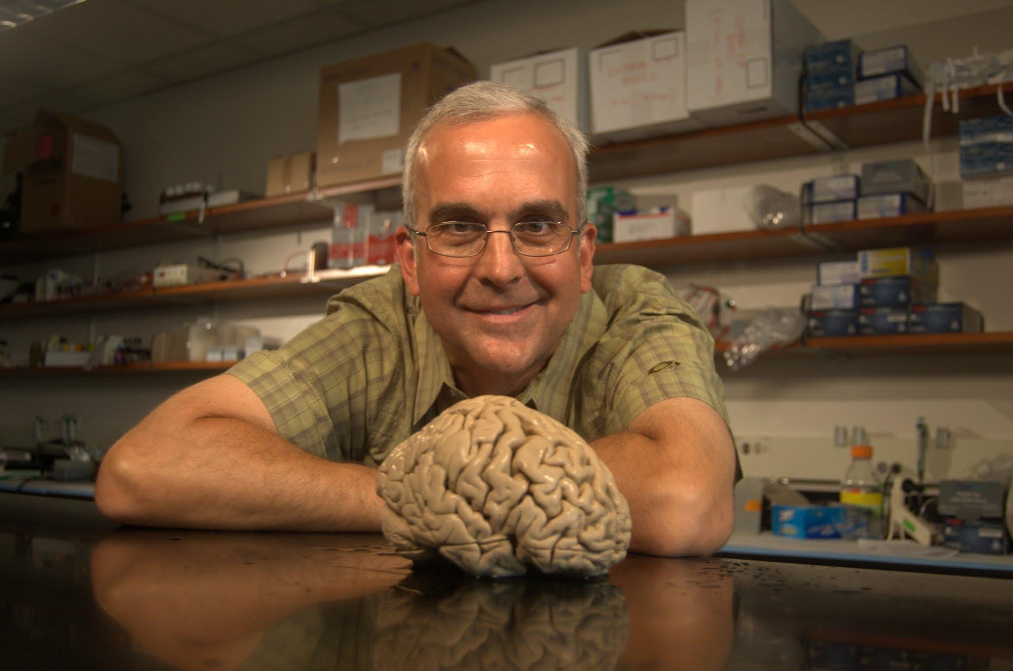 NEUROSCI 380L: Functional Anatomy of the Human Brain FALL 2019