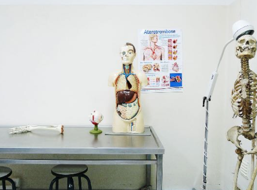 Visual Cultures of Medicine