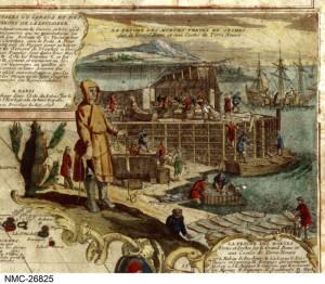 Cod fishing station 1698