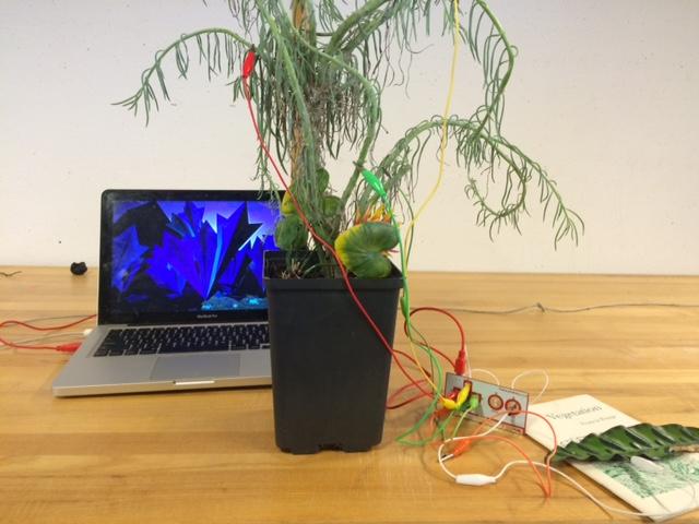 Computational Media Studio